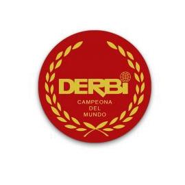 Adhesivo Derbi Resina 5cm